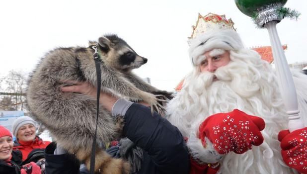 Дед Мороз из Устюга приехал в гости к алтайскому Деду Морозу.