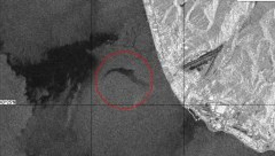 Место крушения Ту-154