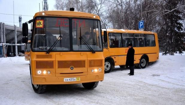 Школьные автобусы.