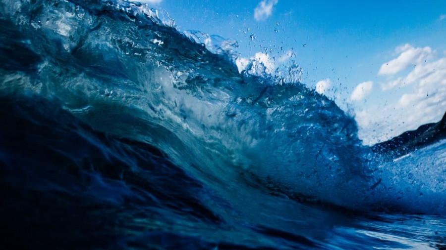 Море. Волна.