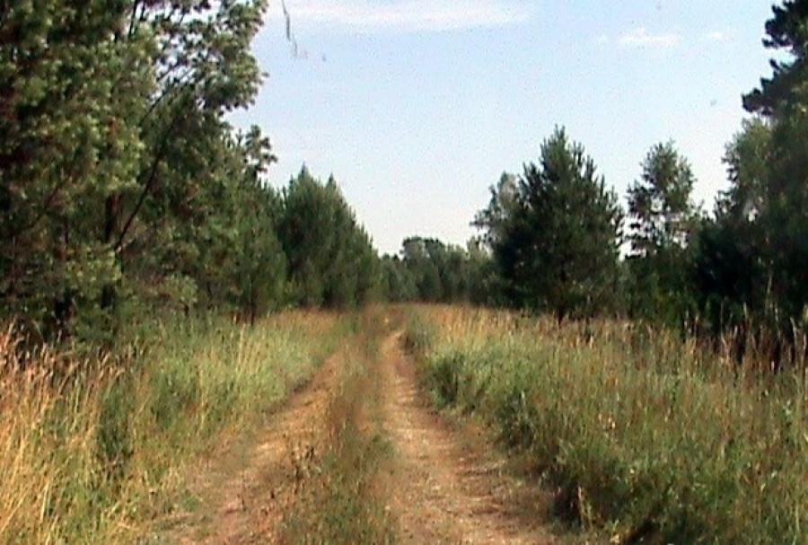 Участок под строительство коттеджного поселка под Баюновскими Ключами.