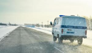 Зима. Дорога. Поземка. Полиция.