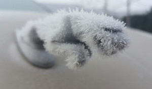 Автомобили. Мороз.