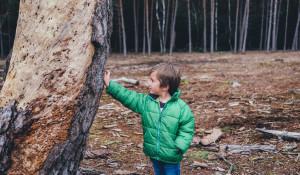 Ребенок в лесу. Дерево.