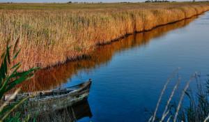 Лодка на озере. Водоем,