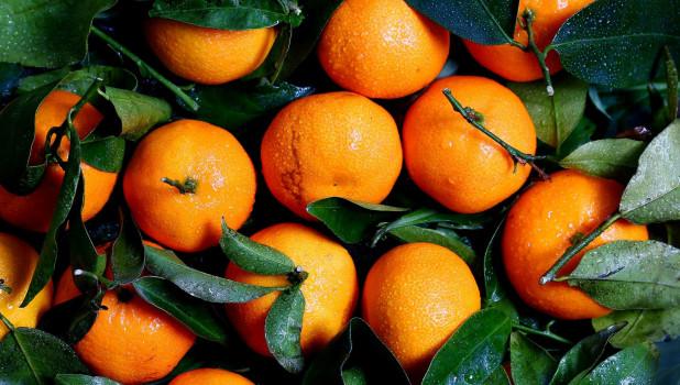 Апельсины, цитрусовые.