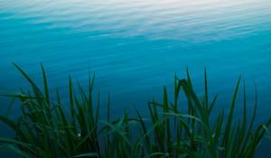 Озеро. Водоем.