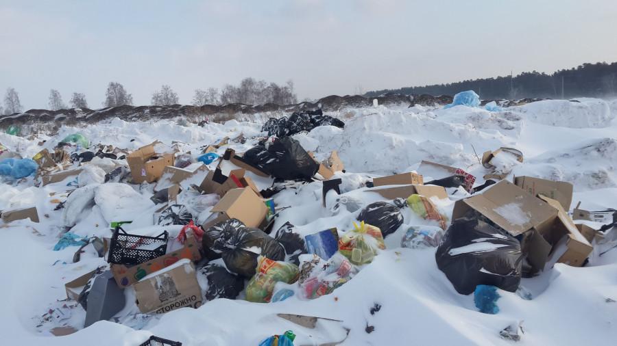 Незаконная свалка в Павловске