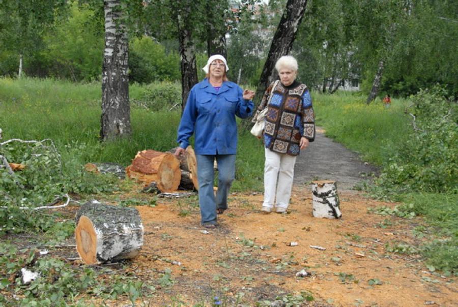"""В """"Мизюлинской роще"""" вырубают деревья."""