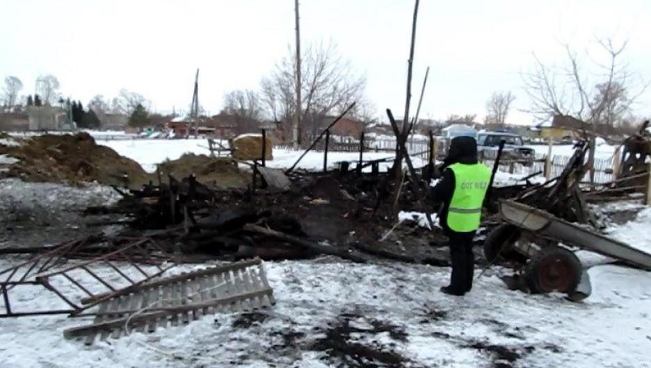 Барнаульца подозревают в умышленном поджоге сарая с телятами.