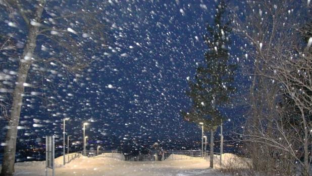 Снег идет. Зима. Метель.