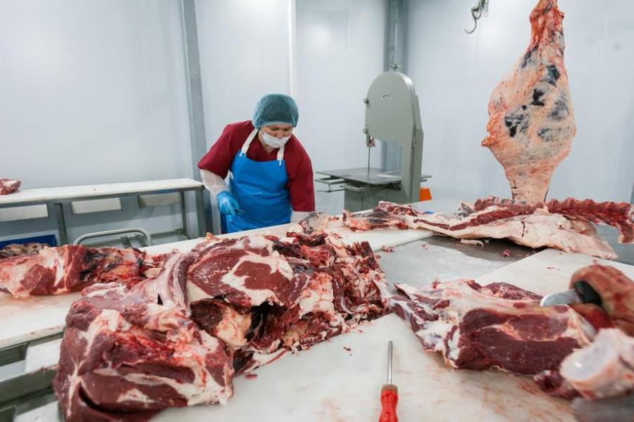 """Кооператив """"Дружба"""" открыл мини-цех по разделке говядины и собственную торговую точку"""