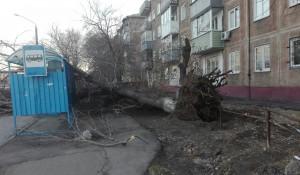 Последствия штормового ветра в Барнауле.