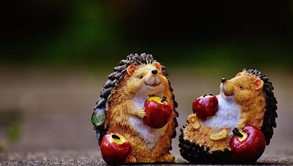 Ежи и яблоки.