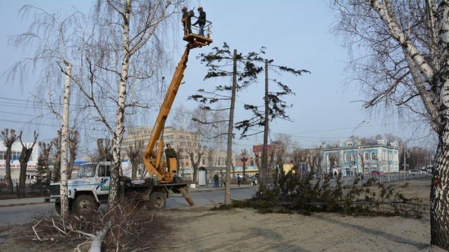 Вырубка старых деревьев на пр. Ленина.