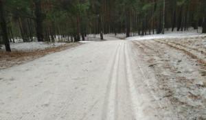 Барнаульцы продолжают кататься на лыжах даже в плюсовую температуру