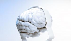 Медицина. Здоровье. Мозг.