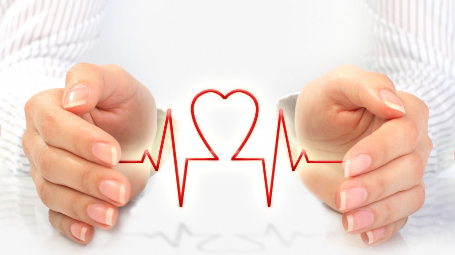 Медицина. Здоровье. Сердцебиение, кардиограмма.