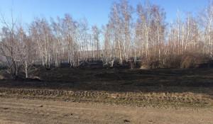 Лесной пожар в Хабарском районе