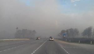 Возле трассы М52 в Новосибирской области горели поля. 5 мая 2017 года.