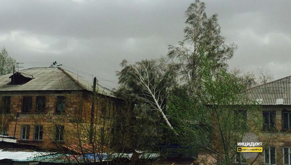 Ураганный ветер в Новосибирске.