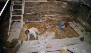 Раскопки в Денисовой пещере в 2010 году.