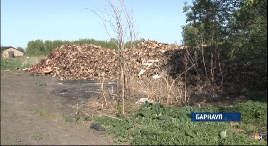 Жители барнаульских поселков просят убрать из жилой зоны цех по производству костной муки