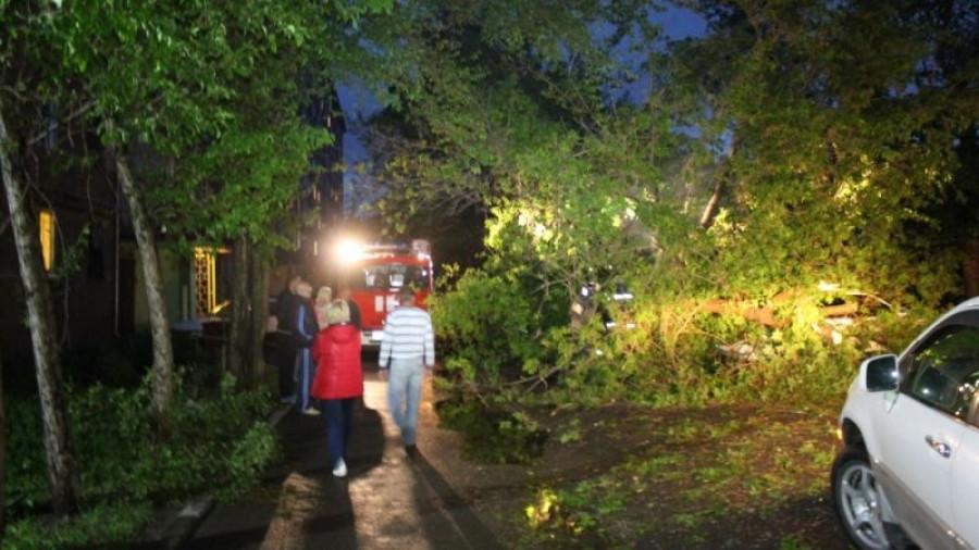 МЧС устраняет последствия ураганного ветра в Барнауле.