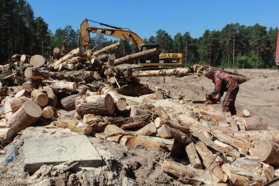 """Вырубка леса возле """"Трассы здоровья"""""""