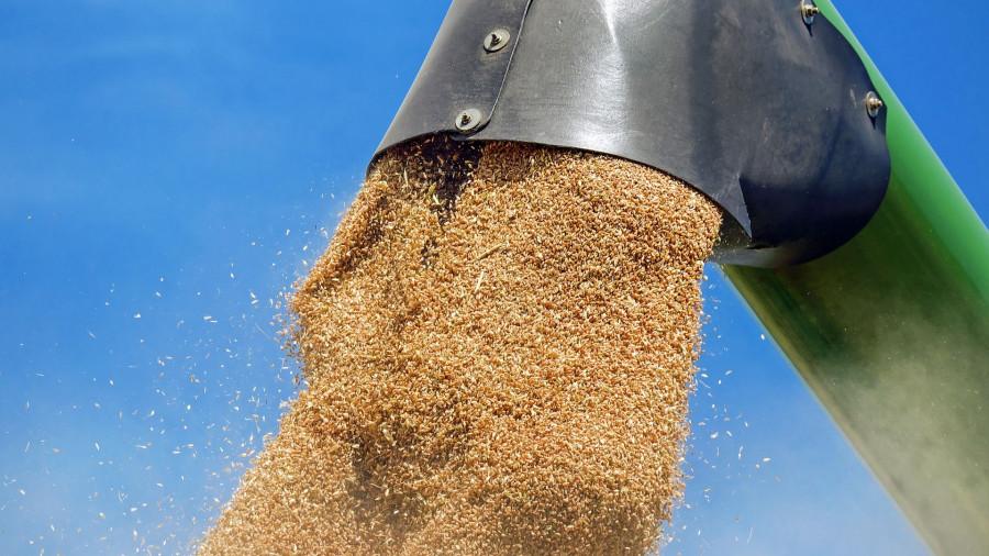 Урожай зерновых. Сельское хозяйство.