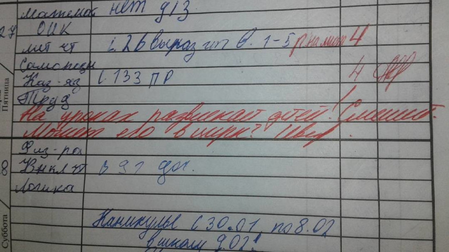 Странные записи в дневниках.