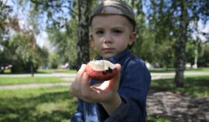 В Барнауле на аллее улицы Малахова растут съедобные грибы.