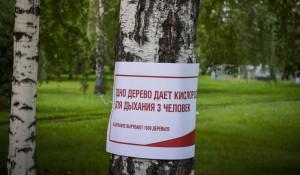 """В Барнуле прошел """"митинг деревьев"""". 26 июля 2017 года."""