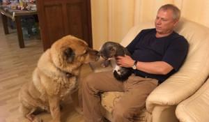 Алтайский парламентарий Валерий Елыкомов рассказал о своих домашних животных .