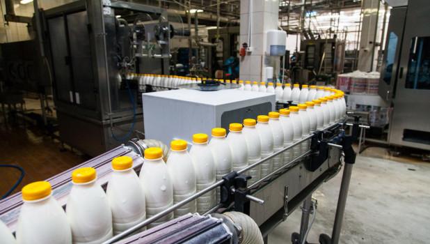 Молоко. Производство