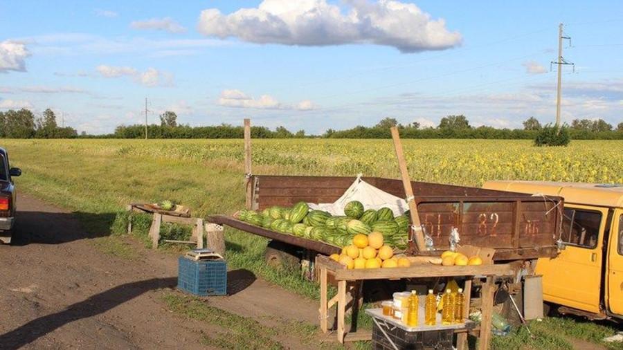 Жители села Подсосново украли арбузы и дыни.
