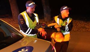 Задержание пьяного водителя, ДПС ГИБДД.