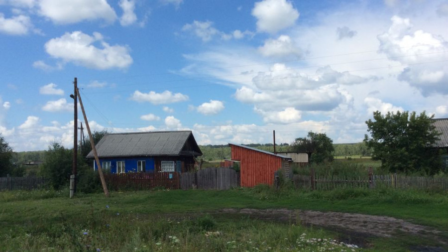 Публицист Томенко: глава региона - о радужном будущем алтайского АПК
