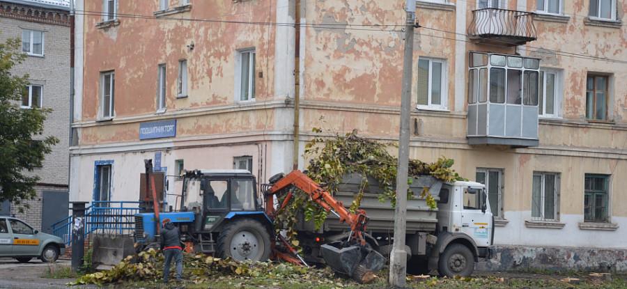 Вырубка деревьев на аллее на ул. Профинтерна