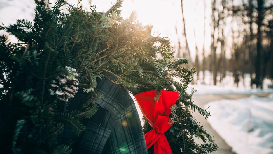 Канун Нового года и Рождества.