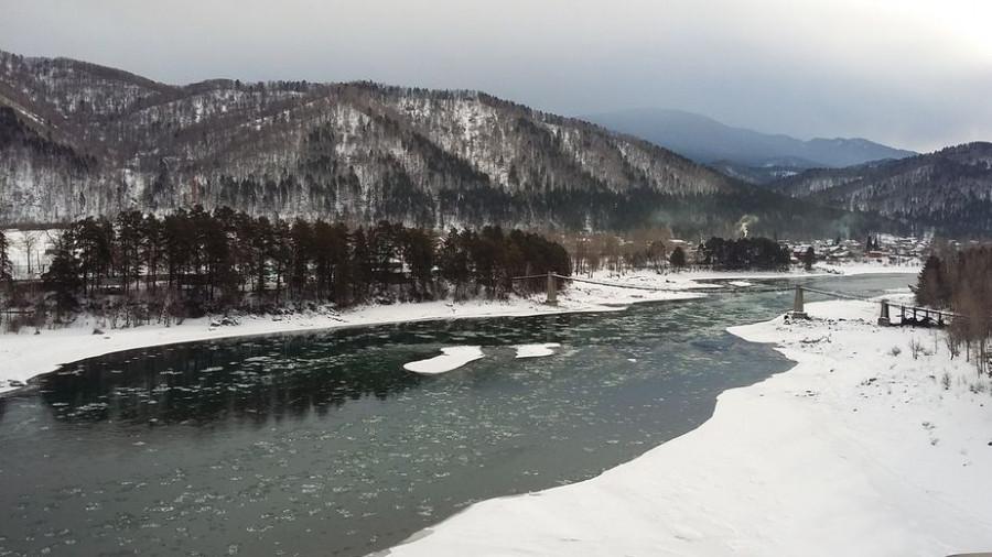 Мост на остров Пихтовый. Источник: vk.com/koronaaltaya