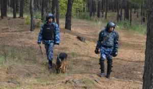 Спецназ ФСИН, поиск сбежавшего преступника.
