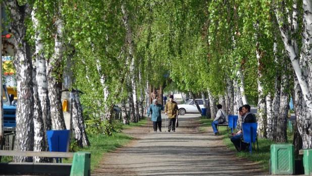 Село Мамонтово Алтайского края.
