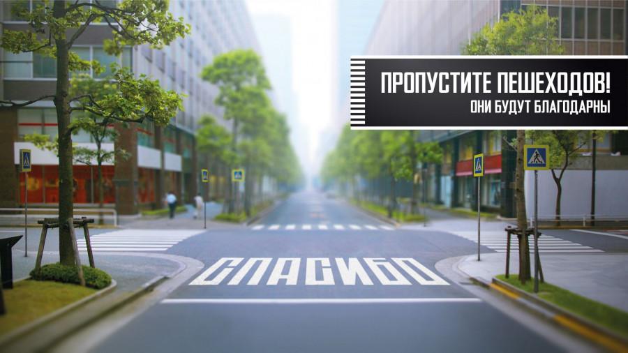 "Акция ""Пропусти пешехода"". Плакат ГИБДД."