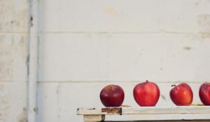 Яблоки, обучение.
