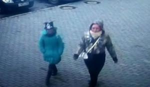 В МВД рассказали подробности краж, совершенных девочкой с хомяком.