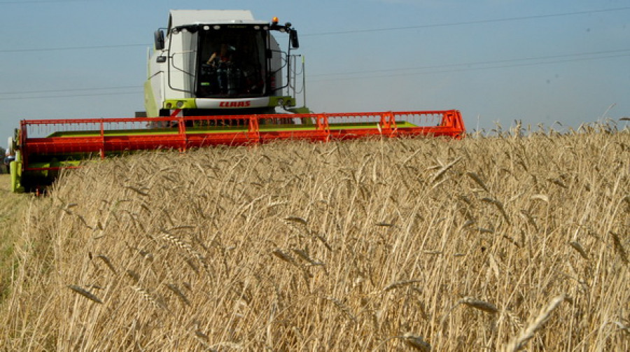 По оперативным данным Минсельхоза, к 20 октября в России было намолочено 62,3 млн. тонн зерна, а озимые посеяны на площади 13,3 млн. га.