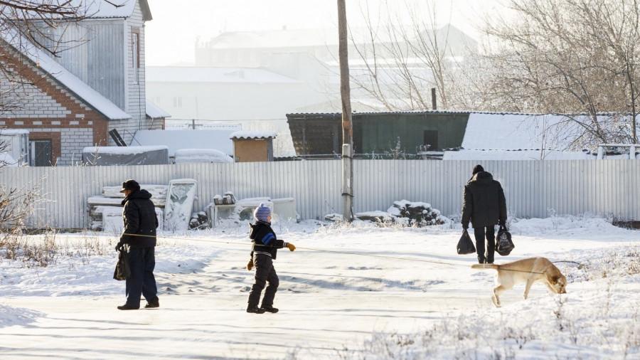 Ул. Советская Армия. Выгул собак. Зима.