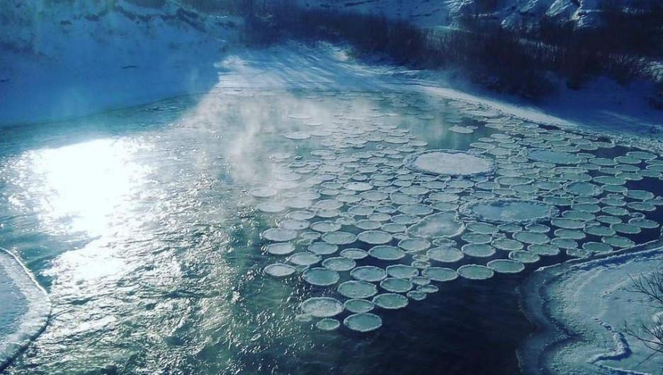 Блинчатый лед на Алтае.