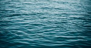 Вода. Водоем.
